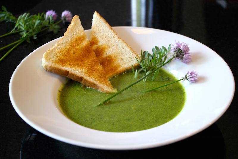 Vegane Suppe von Gartenkräutern